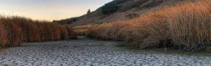 Rivière en sécheresse